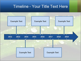 0000083345 PowerPoint Templates - Slide 28