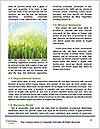 0000083345 Word Templates - Page 4