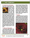 0000083351 Word Template - Page 3