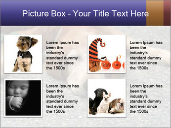 0000083363 PowerPoint Template - Slide 14