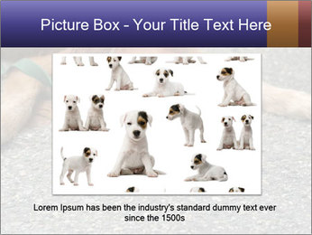 0000083363 PowerPoint Template - Slide 15