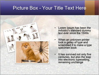 0000083363 PowerPoint Template - Slide 20