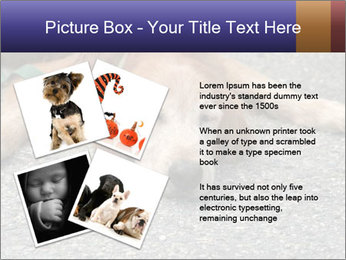 0000083363 PowerPoint Template - Slide 23