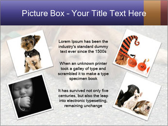 0000083363 PowerPoint Template - Slide 24