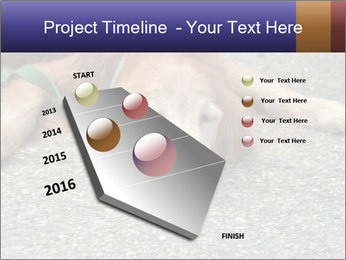 0000083363 PowerPoint Template - Slide 26