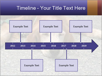 0000083363 PowerPoint Template - Slide 28