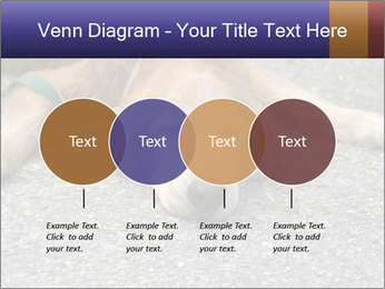 0000083363 PowerPoint Template - Slide 32