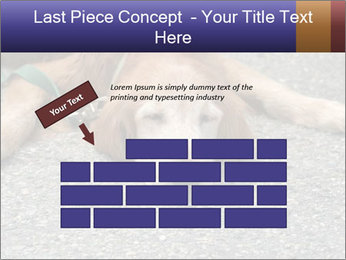 0000083363 PowerPoint Template - Slide 46