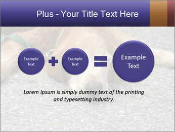0000083363 PowerPoint Template - Slide 75