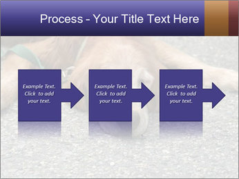 0000083363 PowerPoint Template - Slide 88