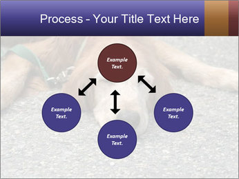 0000083363 PowerPoint Template - Slide 91