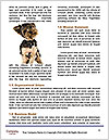 0000083363 Word Template - Page 4