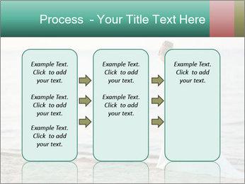 0000083368 PowerPoint Template - Slide 86