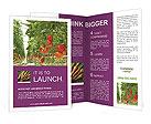 0000083372 Brochure Templates
