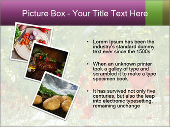 0000083372 PowerPoint Templates - Slide 17