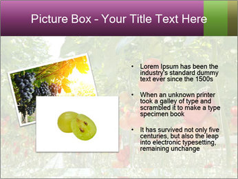 0000083372 PowerPoint Templates - Slide 20