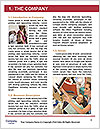 0000083378 Word Template - Page 3