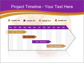 0000083384 PowerPoint Template - Slide 25