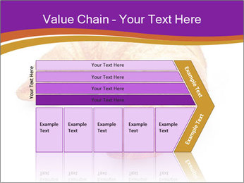 0000083384 PowerPoint Template - Slide 27