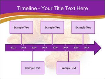 0000083384 PowerPoint Template - Slide 28