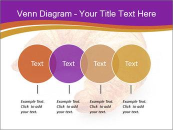 0000083384 PowerPoint Template - Slide 32