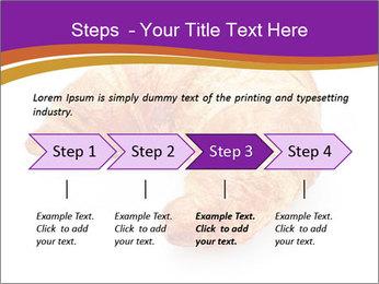0000083384 PowerPoint Template - Slide 4