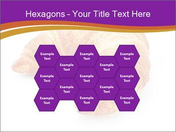0000083384 PowerPoint Template - Slide 44