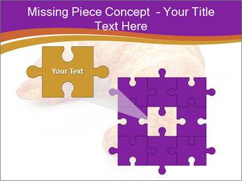 0000083384 PowerPoint Template - Slide 45