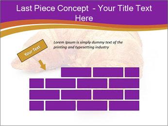 0000083384 PowerPoint Template - Slide 46