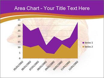 0000083384 PowerPoint Template - Slide 53