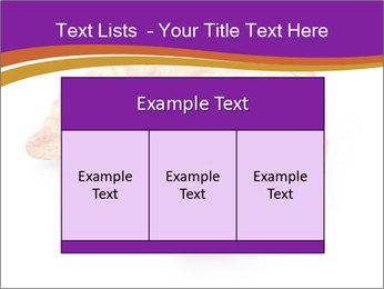 0000083384 PowerPoint Template - Slide 59