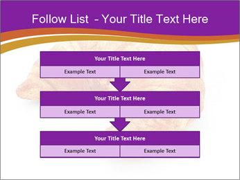 0000083384 PowerPoint Template - Slide 60