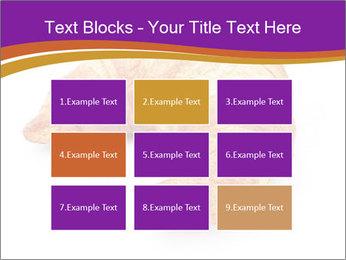 0000083384 PowerPoint Template - Slide 68