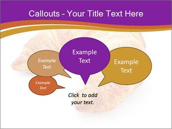 0000083384 PowerPoint Template - Slide 73