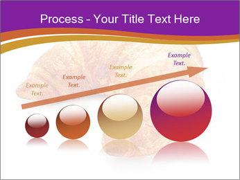 0000083384 PowerPoint Template - Slide 87