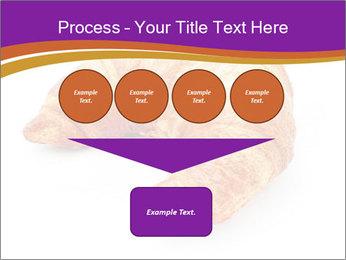 0000083384 PowerPoint Template - Slide 93