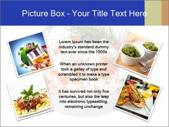 0000083398 PowerPoint Templates - Slide 24