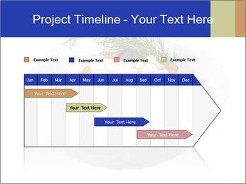 0000083398 PowerPoint Templates - Slide 25