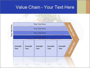 0000083398 PowerPoint Templates - Slide 27