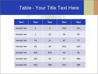 0000083398 PowerPoint Templates - Slide 55