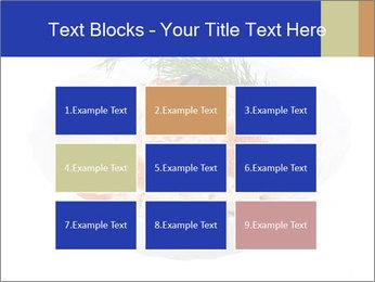 0000083398 PowerPoint Templates - Slide 68
