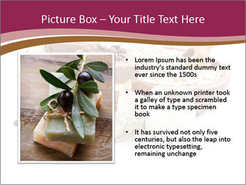 0000083405 PowerPoint Templates - Slide 13