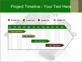 0000083407 PowerPoint Template - Slide 25