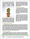 0000083407 Word Templates - Page 4