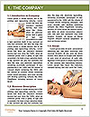 0000083408 Word Template - Page 3