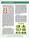 0000083412 Word Templates - Page 3