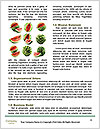 0000083412 Word Templates - Page 4
