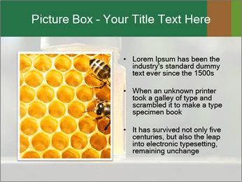0000083420 PowerPoint Templates - Slide 13