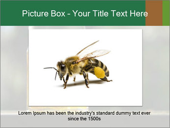 0000083420 PowerPoint Template - Slide 15