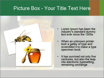 0000083420 PowerPoint Template - Slide 20